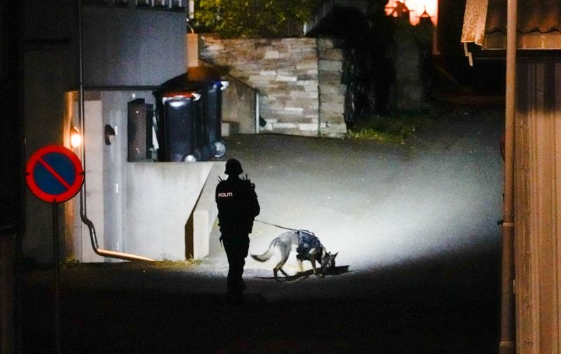 """A Police officer uses a sniffer dog at the scene where they are investigating in Kongsberg, Norway after a man armed with bow killed several people before he was arrested by police on October 13, 2021. - A man armed with a bow and arrows killed several people and wounded others in the southeastern town of Kongsberg in Norway on October 13, 2021, police said, adding they had arrested the suspect. """"We can unfortunately confirm that there are several injured and also unfortunately several killed in this episode,"""" local police official Oyvind Aas told a news conference. """"The man who committed this act has been arrested by the police and, according to our information, there is only one person involved."""" (Photo by Håkon Mosvold Larsen / NTB / AFP) / Norway OUT / ALTERNATIVE CROP"""