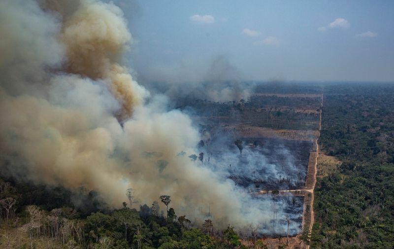 """Handout aerial picture released by Greenpeace showing smoke billowing from forest fires in the municipality of Candeias do Jamari, close to Porto Velho in Rondonia State, in the Amazon basin in northwestern Brazil, on August 24, 2019. - Brazil on August 25 deployed two Hercules C-130 aircraft to douse fires devouring parts of the Amazon rainforest. The latest official figures show 79,513 forest fires have been recorded in the country this year, the highest number of any year since 2013. More than half of those are in the massive Amazon basin. Experts say increased land clearing during the months-long dry season to make way for crops or grazing has aggravated the problem this year. (Photo by Victor MORIYAMA / GREENPEACE / AFP) / RESTRICTED TO EDITORIAL USE - MANDATORY CREDIT """"AFP PHOTO / GREENPEACE / VICTOR MORIYAMA"""" - NO MARKETING - NO ADVERTISING CAMPAIGNS - NO RESALE - NO ARCHIVE - IMAGE AVAILABLE FOR PUBLICATION AND DOWNLOAD UNTIL 09.09.2019 - DISTRIBUTED AS A SERVICE TO CLIENTS /"""