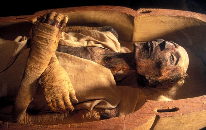 Ramases II mummy. Mummified remains of the Egyptian Pharaoh Rameses II (1301-1235 BC) in a climate-controlled display case. Rameses II was the third pharaoh of the 19th dynasty. He reigned Egypt from 1279-1213 BC and is often regarded as the greatest and most powerful pharaoh of the Egyptian Empire. Photographed in the Royal Mummy Hall of the Museum of Egyptian Antiquities, Cairo, Egypt.,Image: 129115232, License: Rights-managed, Restrictions: , Model Release: no