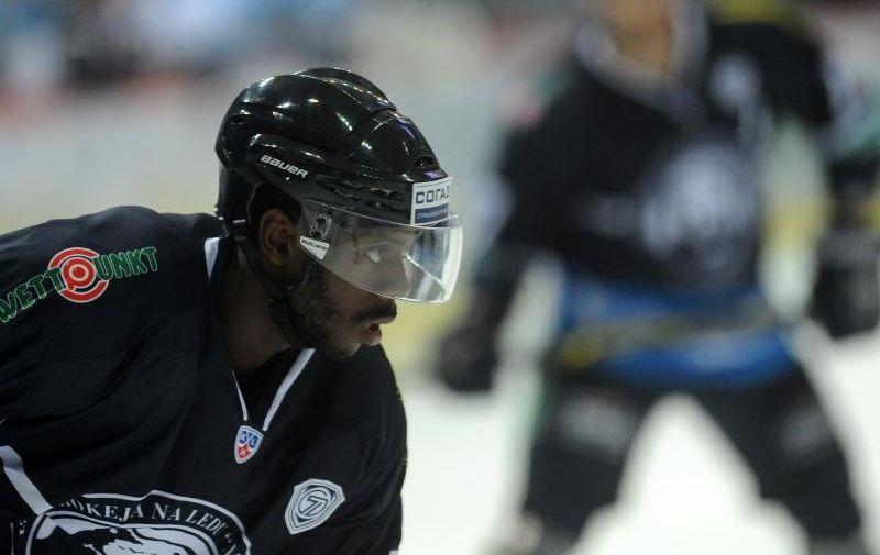 28.10.2014., Dom sportova, Zagreb - Kontinentalna hokejaska liga, 23. kolo, KHL Medvescak - HC Sibir Novosibirsk. Edwin Hedberg.  Photo: