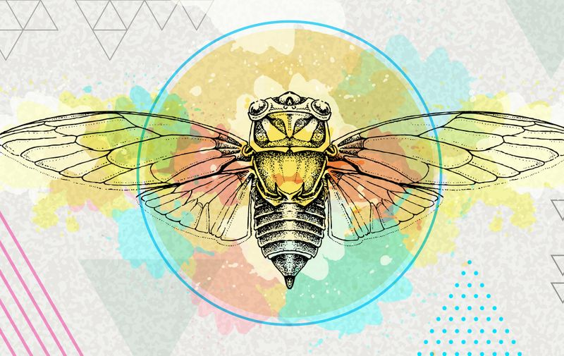 Realistic cicada illustration on artistic polygon watercolor background. Astrology zodiac sign