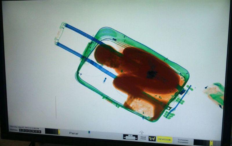 Abou u kovčegu