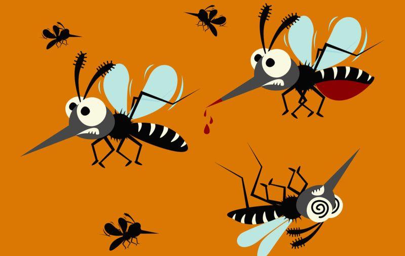 mosquito set isolated on orange background.