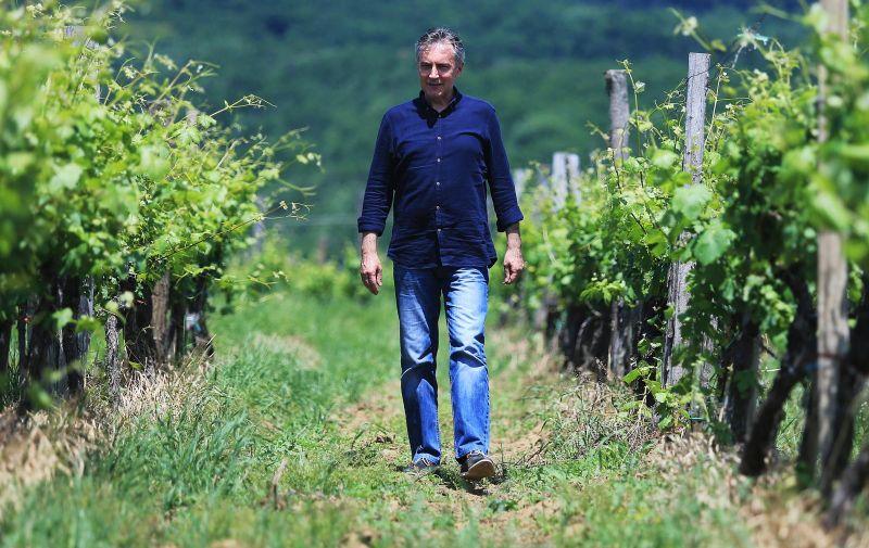 30.05.2016., Kutjevo - Poznati pjevac i zabavljac Miroslav Skoro kupio je vinograd i vec prvu godinu postao sampion na Festivalu grasevine.  Photo: Davor Javorovic/PIXSELL